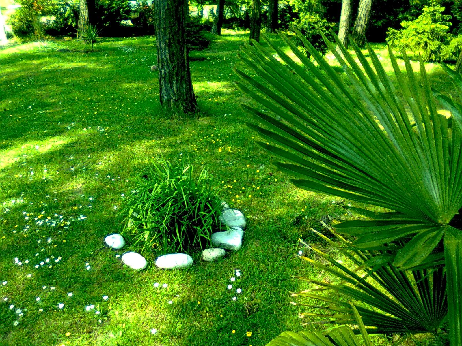Http jardin paysagiste for Jardin paysagiste photo
